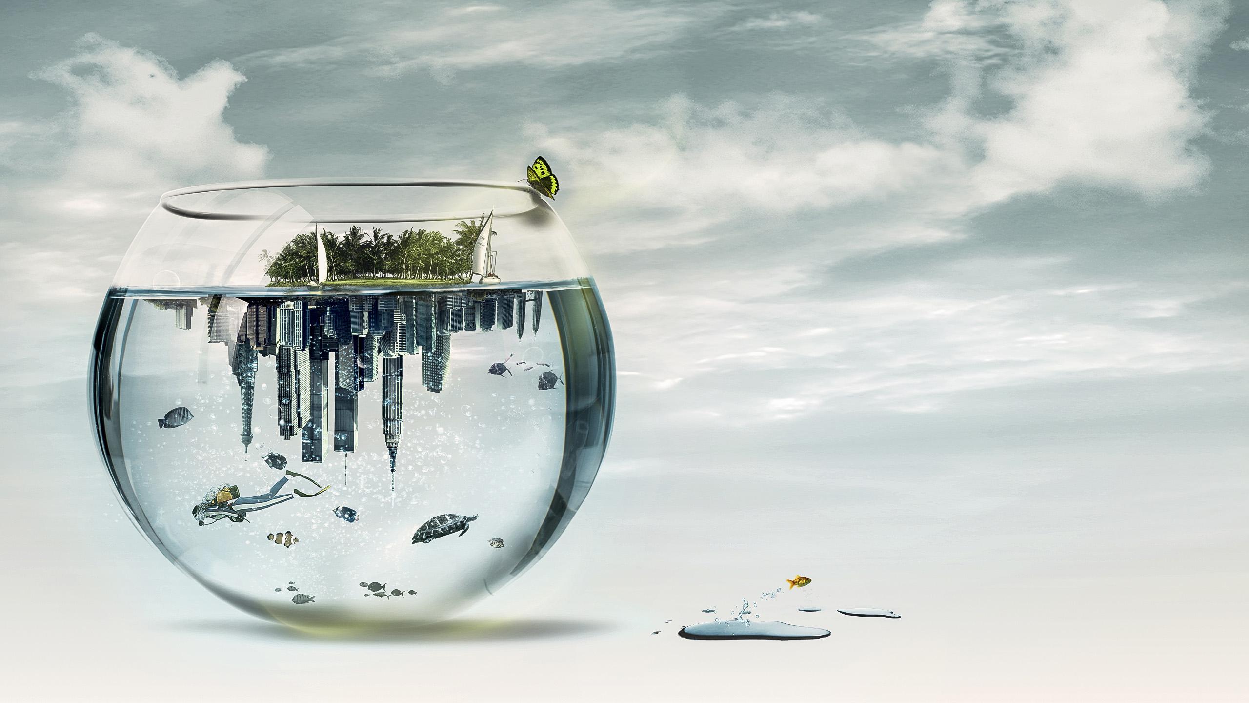 Aquarium World